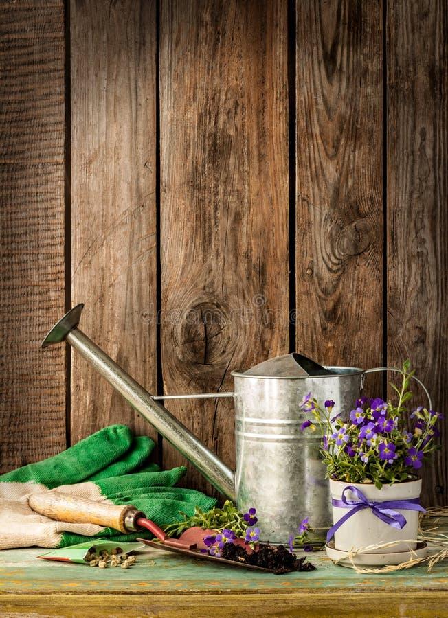 在葡萄酒木背景-春天的园艺工具 免版税库存图片