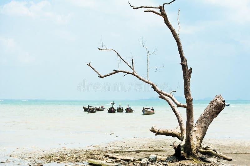 在葡萄酒样式的热带海滩视图 与泰国的海洋风景 免版税图库摄影