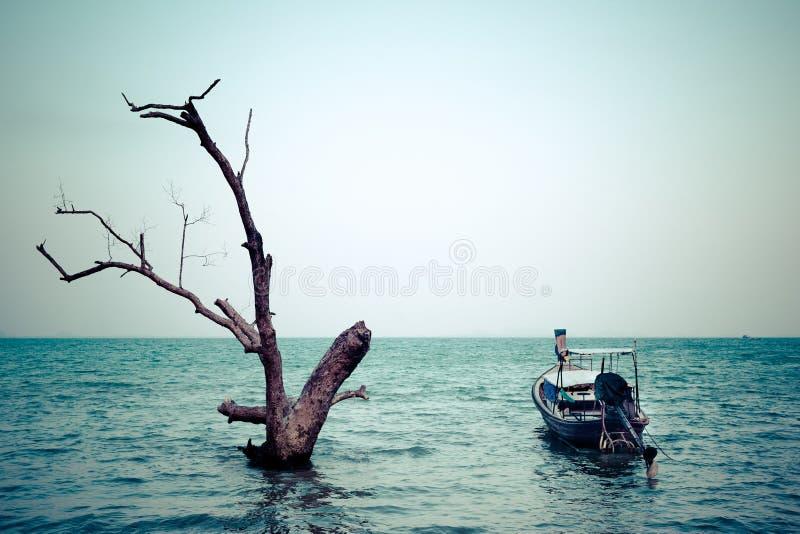 在葡萄酒样式的热带海滩视图 与泰国的海洋风景 免版税库存照片