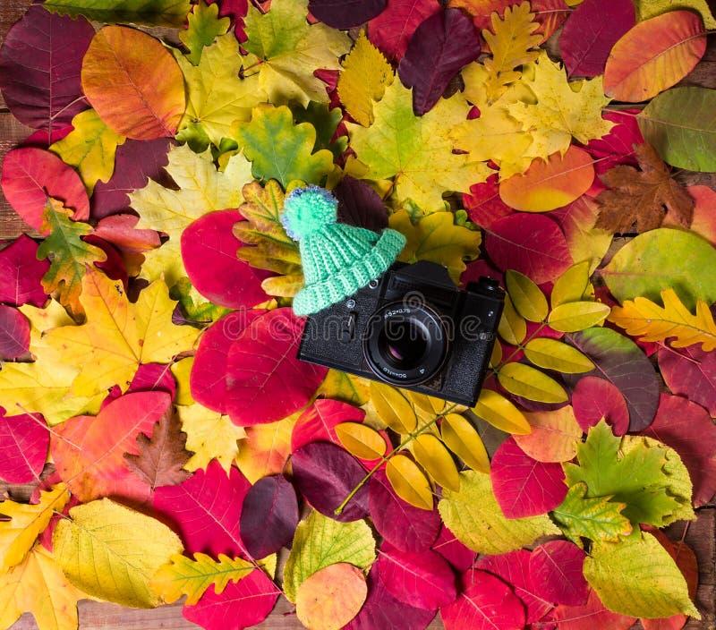在葡萄酒秋叶抽象背景的老减速火箭的照相机 库存图片