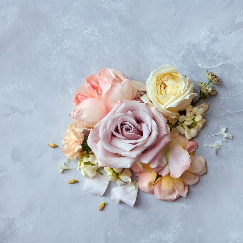 在葡萄酒颜色样式的玫瑰花 免版税库存照片
