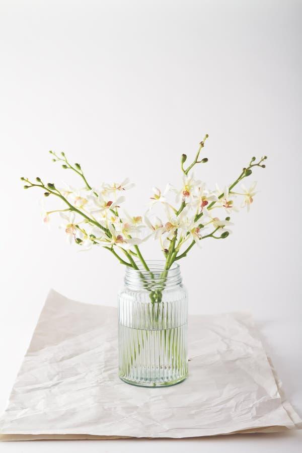 在葡萄酒玻璃瓶子的简单的白色兰花有文本的空间的 免版税库存图片