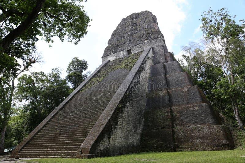 在蒂卡尔,危地马拉,中美洲的寺庙v 库存图片