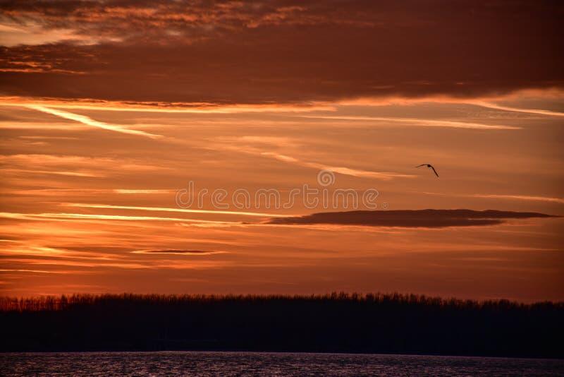 在蒂萨河小屋上的日落 免版税库存照片