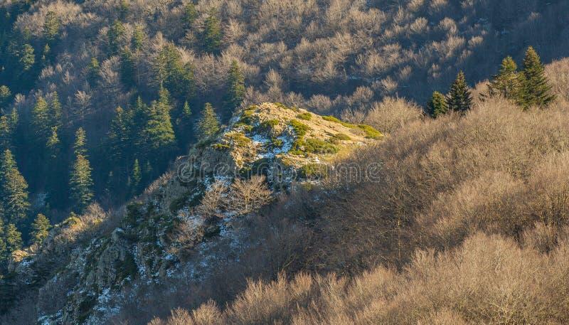 在蒙塞尼山森林岩石小山的第一雪  免版税图库摄影