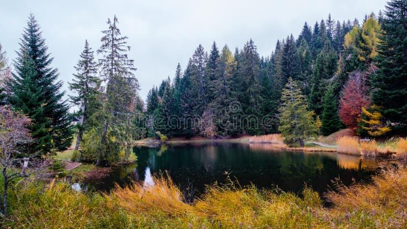 在蒙特勒附近的一个小田园诗山湖在有美好的秋天颜色的瑞士 紫胶des Joncs,列斯Paccots,美丽 免版税图库摄影