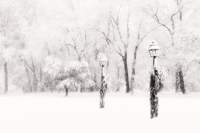 在蒙蔽的雪风暴的Lamposts 免版税库存图片