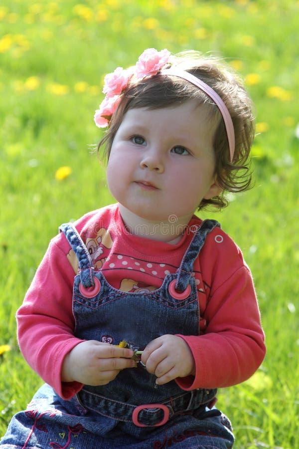 在蒲公英草坪中的女婴 库存照片