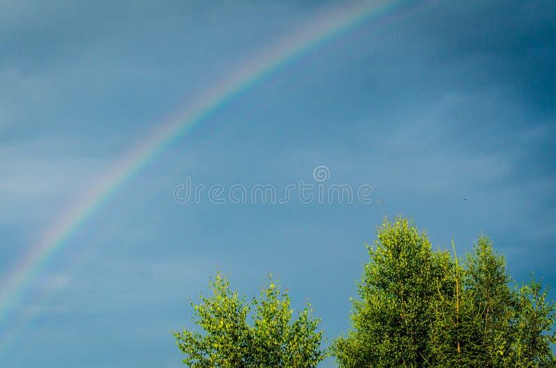 在蓝天的彩虹 免版税库存照片