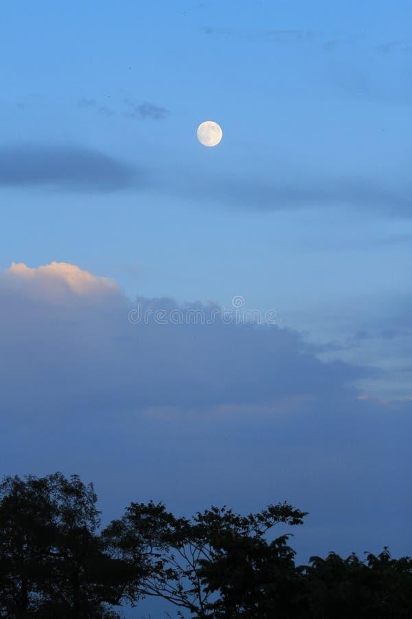 在蓝天的满月 免版税库存照片