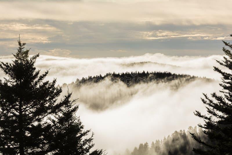 在蓝岭山行车通道的有雾的日出 库存图片