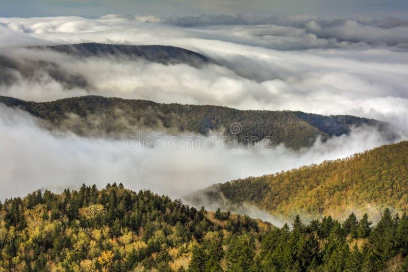 在蓝岭山行车通道的雾 库存图片