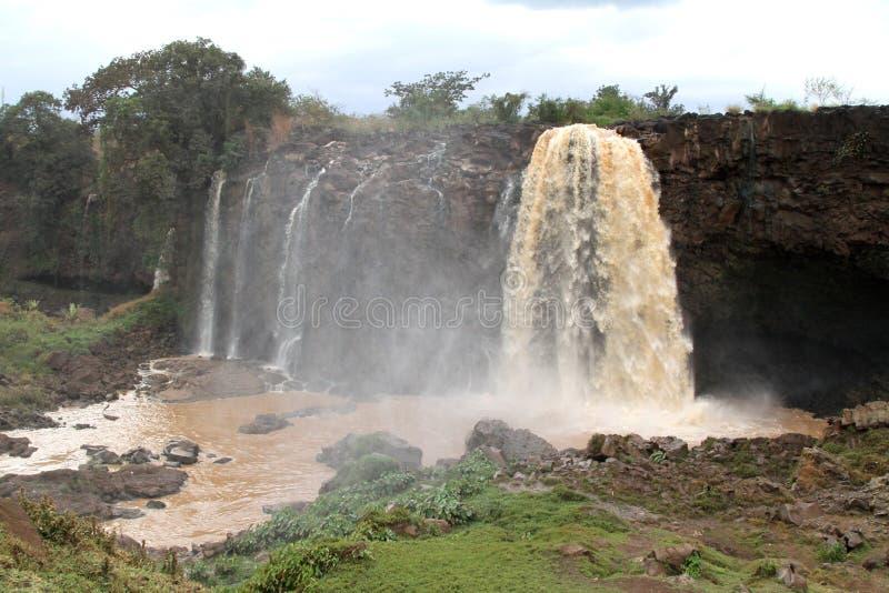 在蓝色尼罗河,埃塞俄比亚的Tiss abay秋天 免版税库存图片
