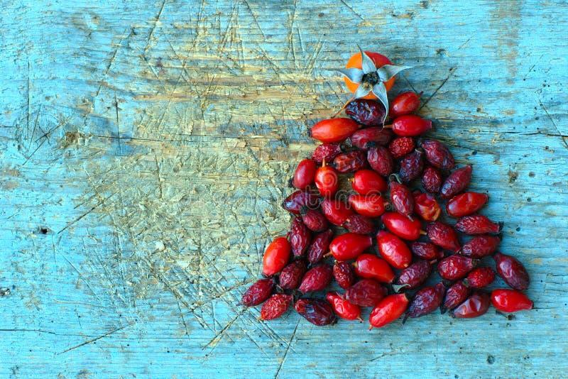 在蓝色木背景的红色野玫瑰果 免版税库存图片