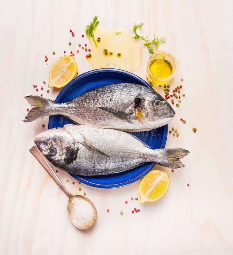 在蓝色板材的未加工的dorado鱼有溢出的油、盐、草本和香料的在白色木背景 免版税库存照片
