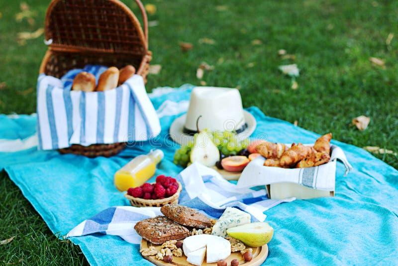 在蓝色格子花呢披肩的夏天野餐在公园 库存照片