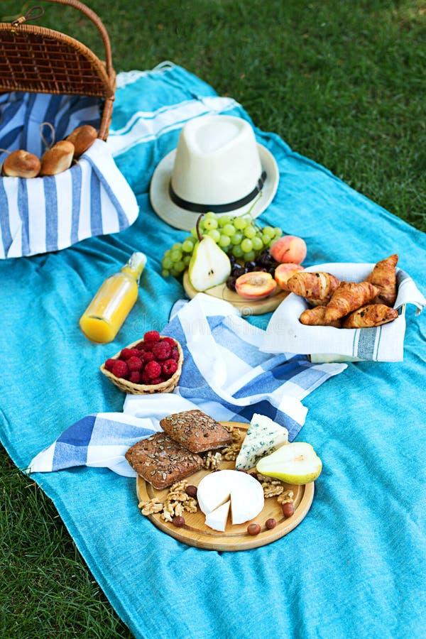 在蓝色格子花呢披肩的夏天野餐在公园 免版税库存图片