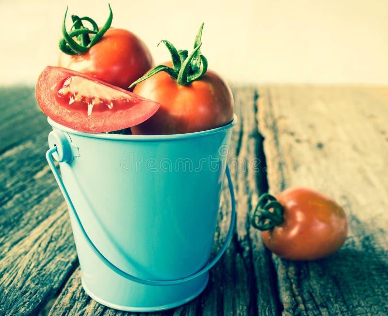 在蓝色桶的蕃茄 免版税图库摄影