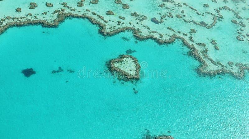 在蓝色的心脏 免版税库存图片