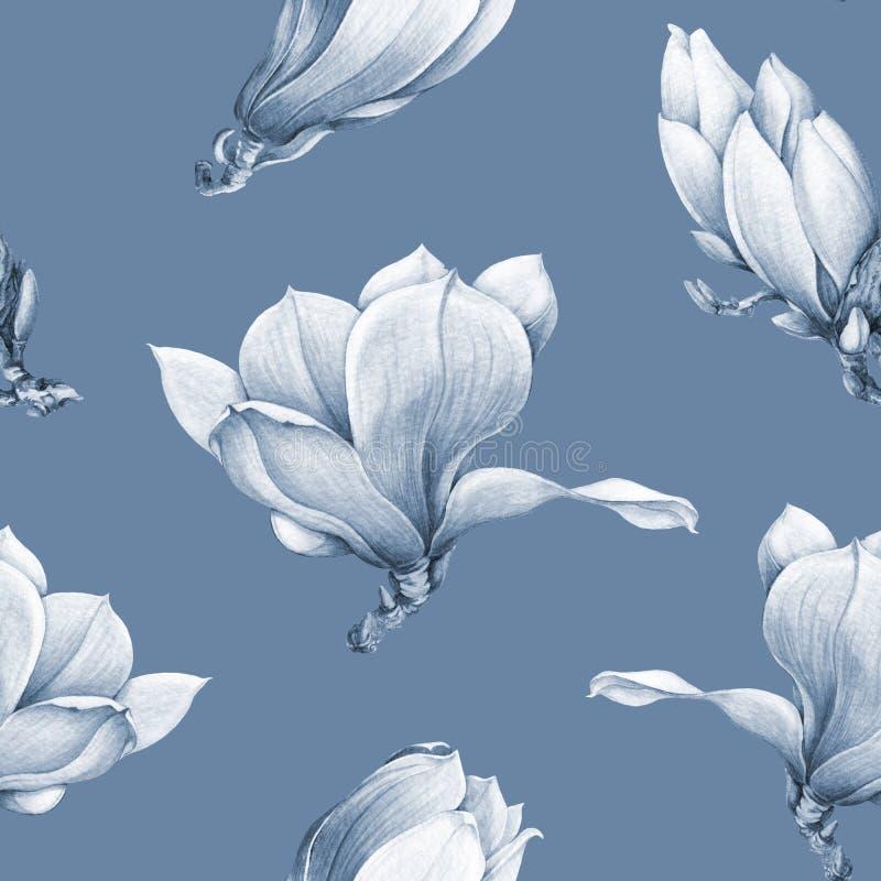在蓝色的水彩单色木兰开花的无缝的样式 美丽的手拉的春天开花 库存例证
