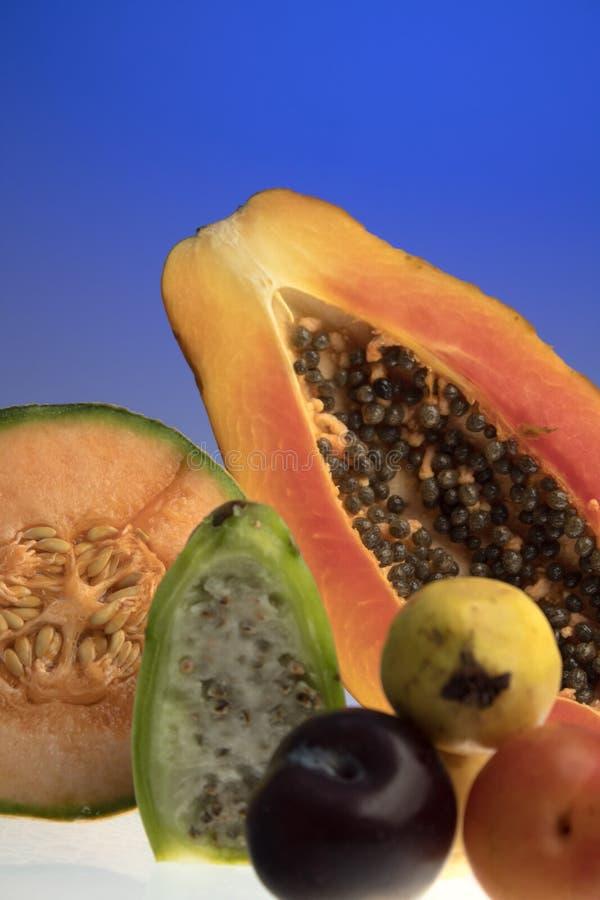 在蓝色的热带水果 库存图片