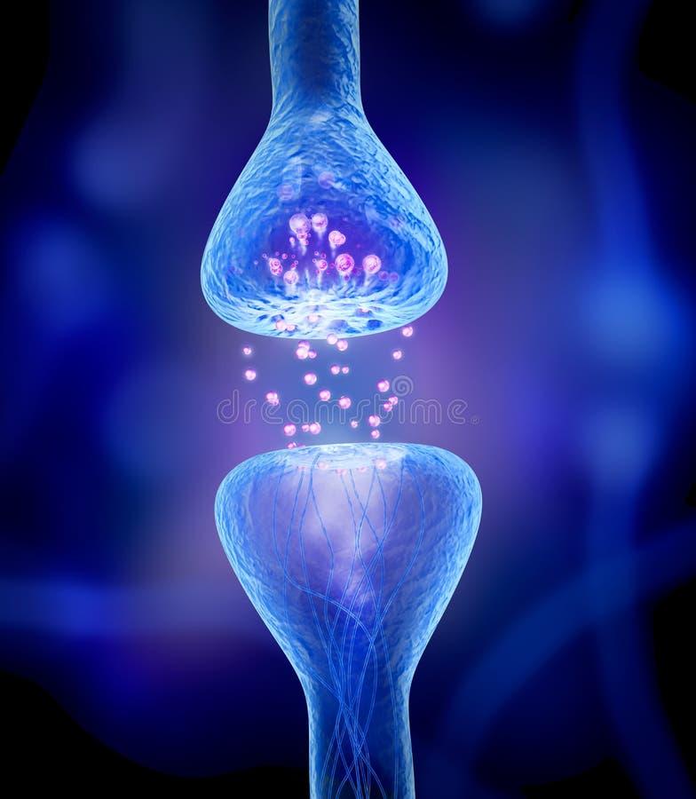 在蓝色的活跃感受器官 皇族释放例证
