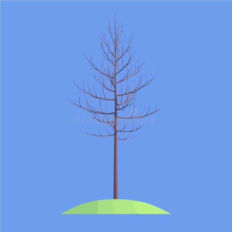 在蓝色背景的一棵树 免版税库存照片