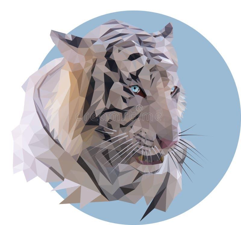 在蓝色背景的白色老虎 向量例证