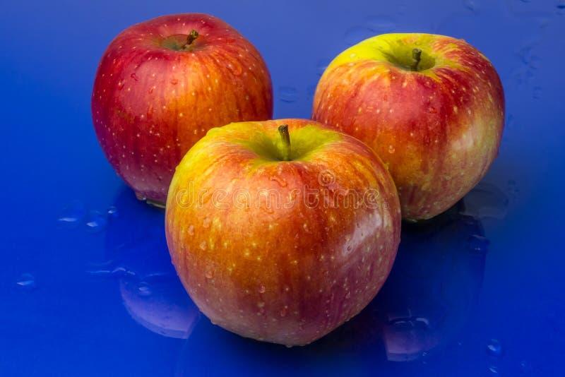 在蓝色背景的红色和黄色苹果 库存图片