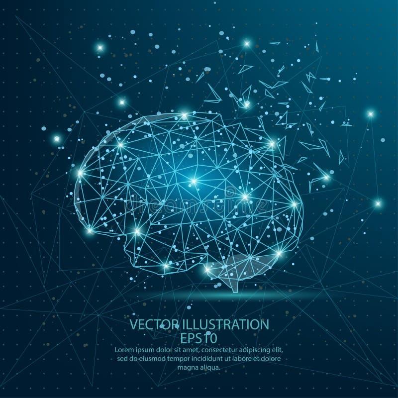 在蓝色背景的脑子形式低多导线框架 向量例证