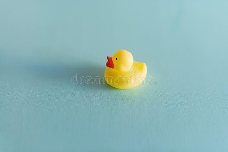 在蓝色背景隔绝的一只黄色橡胶鸭子 r 免版税库存图片