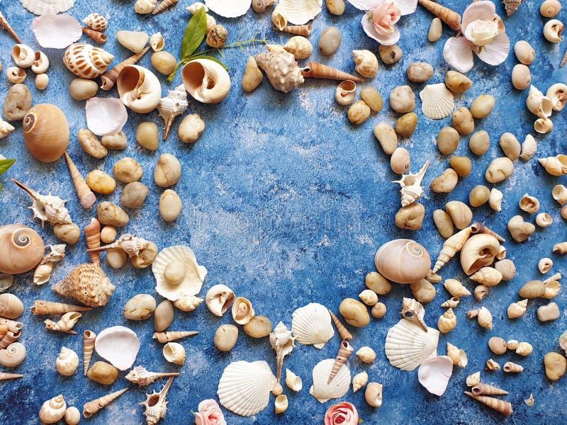 在蓝色背景,海洋海洋夏天海假日sunglass电话白色凉鞋的贝壳成珠状海滩自然背景 免版税图库摄影