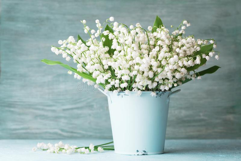 在蓝色花瓶的铃兰花在土气桌上 春天芳香花束 免版税库存图片