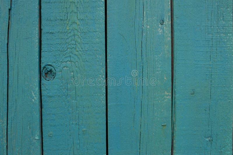 在蓝色轻的自然颜色背景,与空间的老盘区背景的摘要绿松石明亮的木纹理文本的 库存图片