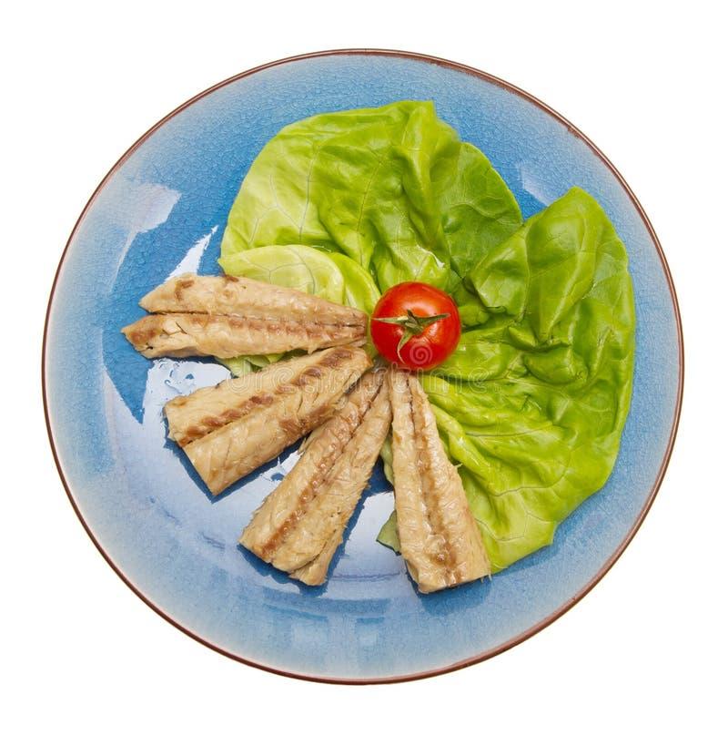 Download 在蓝色隔绝的鲭鱼内圆角 库存图片. 图片 包括有 空白, 肥胖, 背包, 查出, 迷迭香, 鲭鱼, 里脊肉 - 72360379