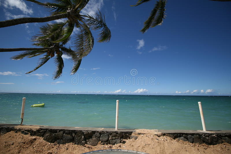 在蓝绿色海洋的木筏有棕榈树和沙子的 库存照片