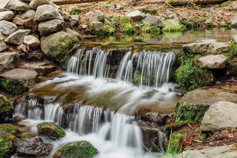 在蕨春天的小瀑布在优胜美地谷 库存照片