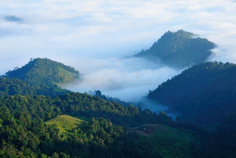在薄雾之上 库存照片