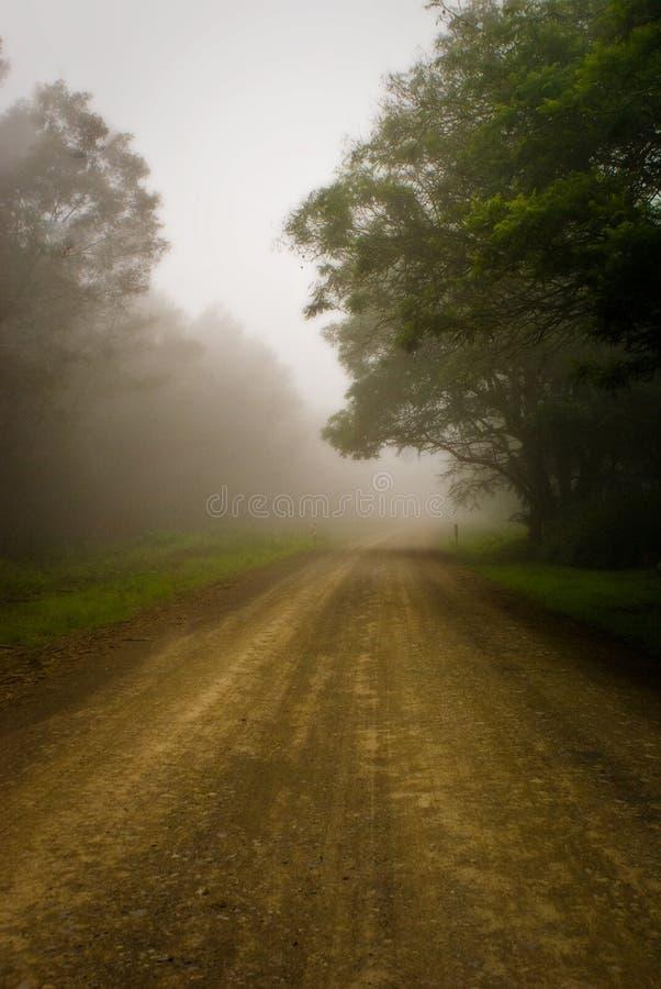 在薄雾的乡下公路 免版税库存照片