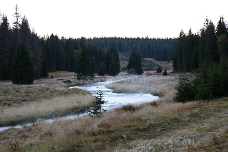 在薄雾的秋天风景, Sumava国家公园,捷克,欧洲 免版税库存图片