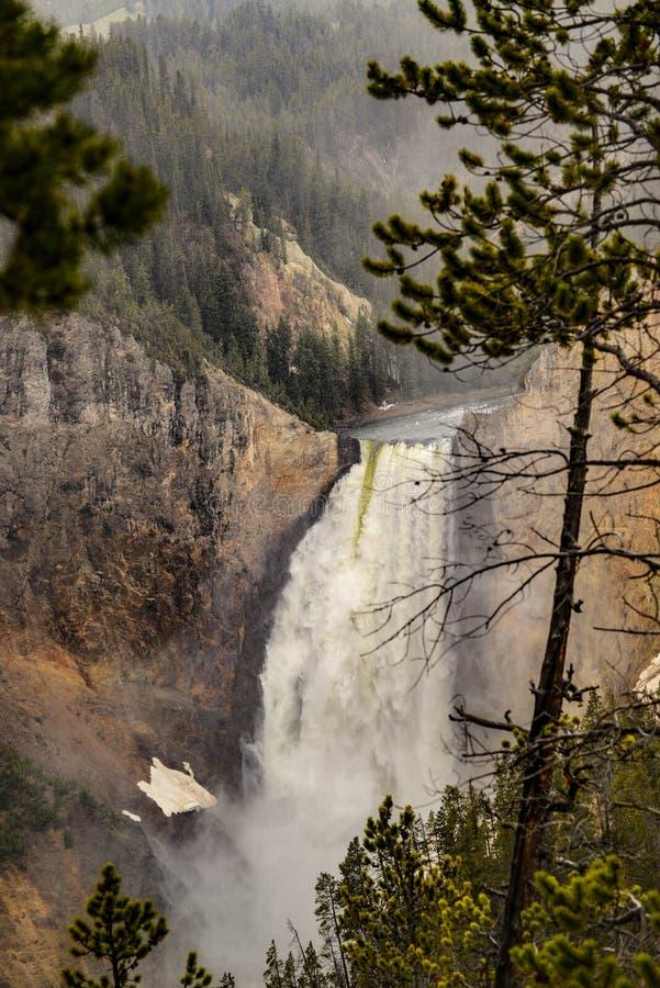 在薄雾的黄石更低的瀑布在黄石国家公园,怀俄明 图库摄影