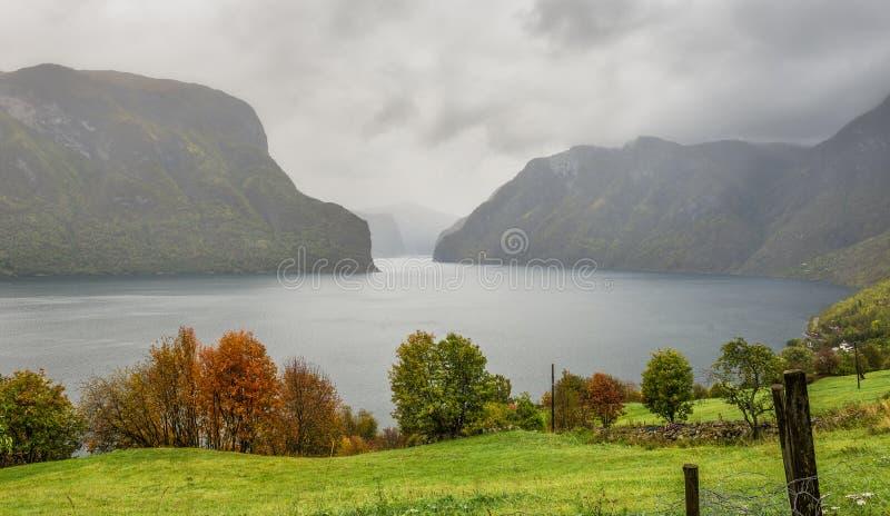 在薄雾的Aurlandsfjord,在Aurland附近,挪威 免版税库存图片