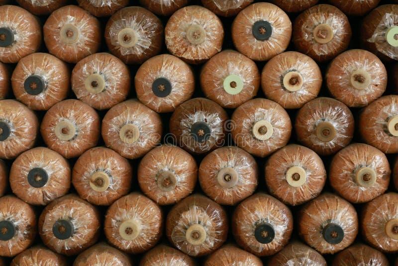 在蘑菇房子的很多蘑菇瓶 图库摄影