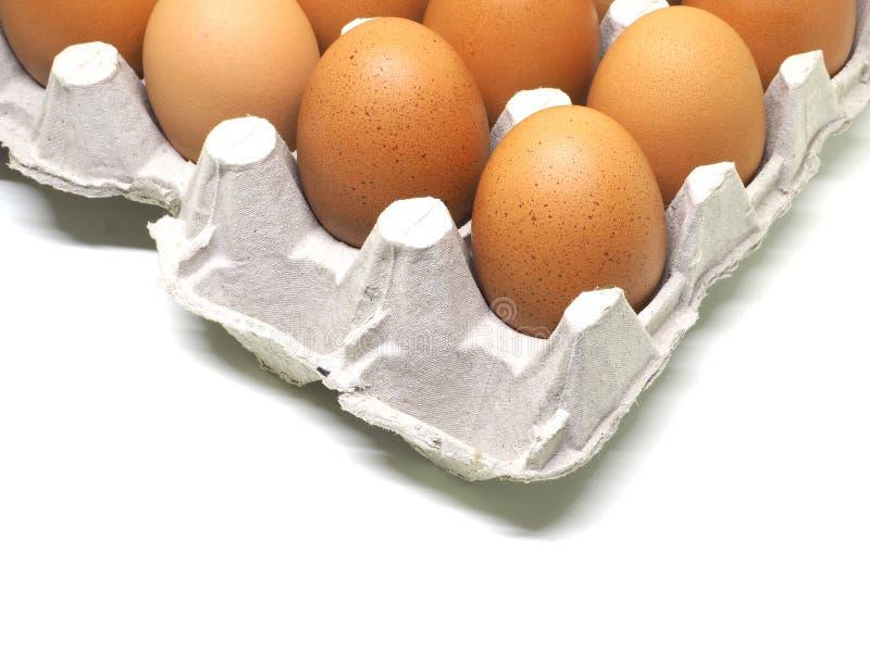 在蛋壳孤立的鸡蛋在白色 库存图片