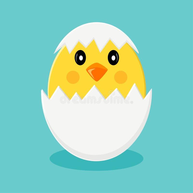 在蛋壳的逗人喜爱的小鸡 r 皇族释放例证
