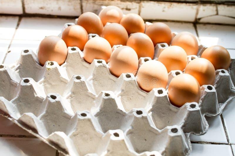 在蛋纸盘区的鸡蛋 图库摄影