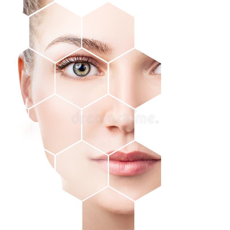 在蜂窝的美丽的女性面孔 温泉概念 免版税库存图片