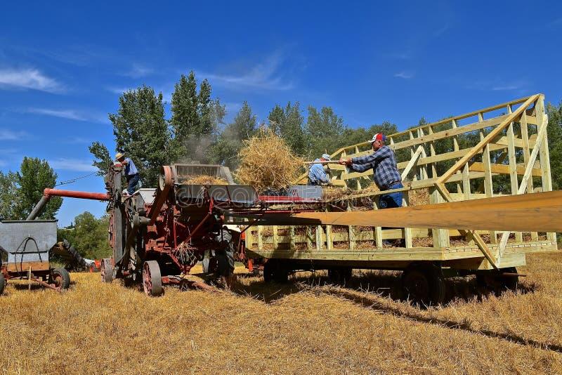 在行动的打谷机在农厂团聚 库存照片