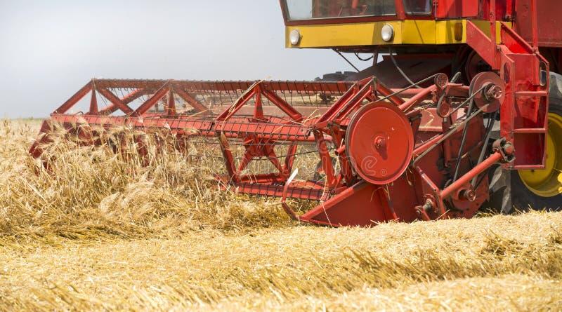 在行动的联合收割机对大麦领域 图库摄影