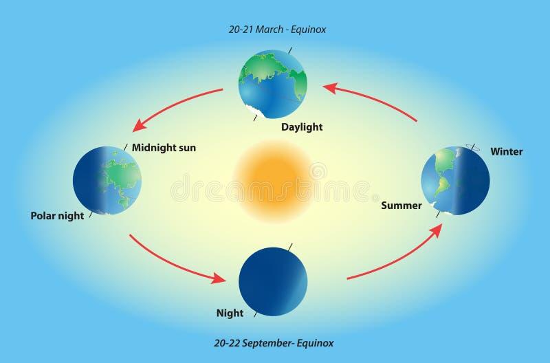 在行星地球上的季节。 昼夜平分点和至日。 皇族释放例证